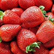 Ecologistas en Acción denuncia la presencia de plaguicidas en el 44% de las frutas y verduras