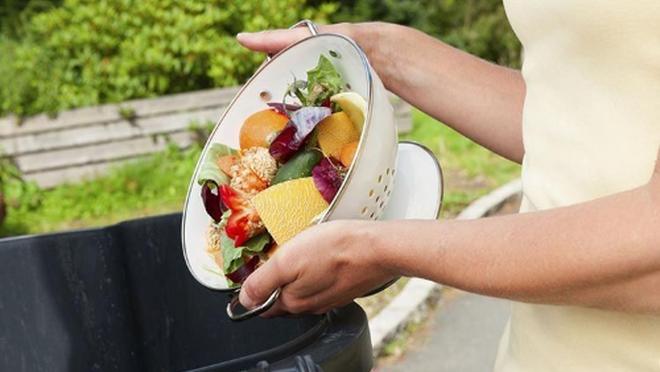 Día contra el desperdicio alimentario: El 73% de los españoles se siente culpable al tirar comida a la basura