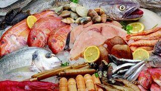 Distintos tipos de pescados y mariscos