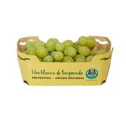 Alcampo inicia la venta de uvas de Producción Controlada