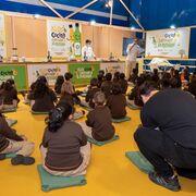 Acuerdo para consumir solo aceites de oliva españoles en los menús escolares